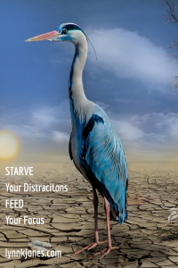 Starve Your Distractions Feed Your Focus - Unknown author; Lynnkjones.com