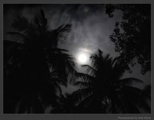 Midnight by Amit Ghosh